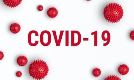 PENGISIAN FORMULIR SURVEY KEWASPADAAN COVID-19 PERIODE II